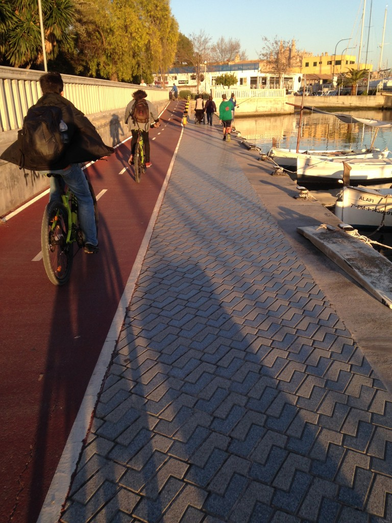 Bicycle Lane next to the sea!
